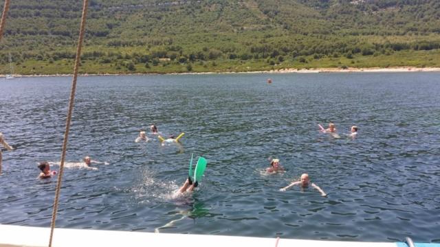 Everybody swimming